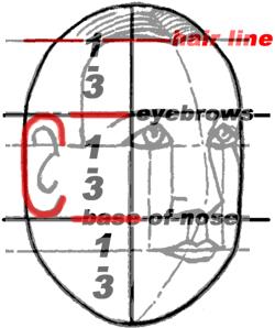 Cele 6 proporții ale capului - cum trasezi liniile feței în machiaj make up